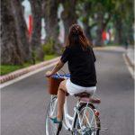 Bicycle & Bike Rental